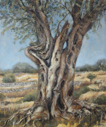 3 olivetree2 small